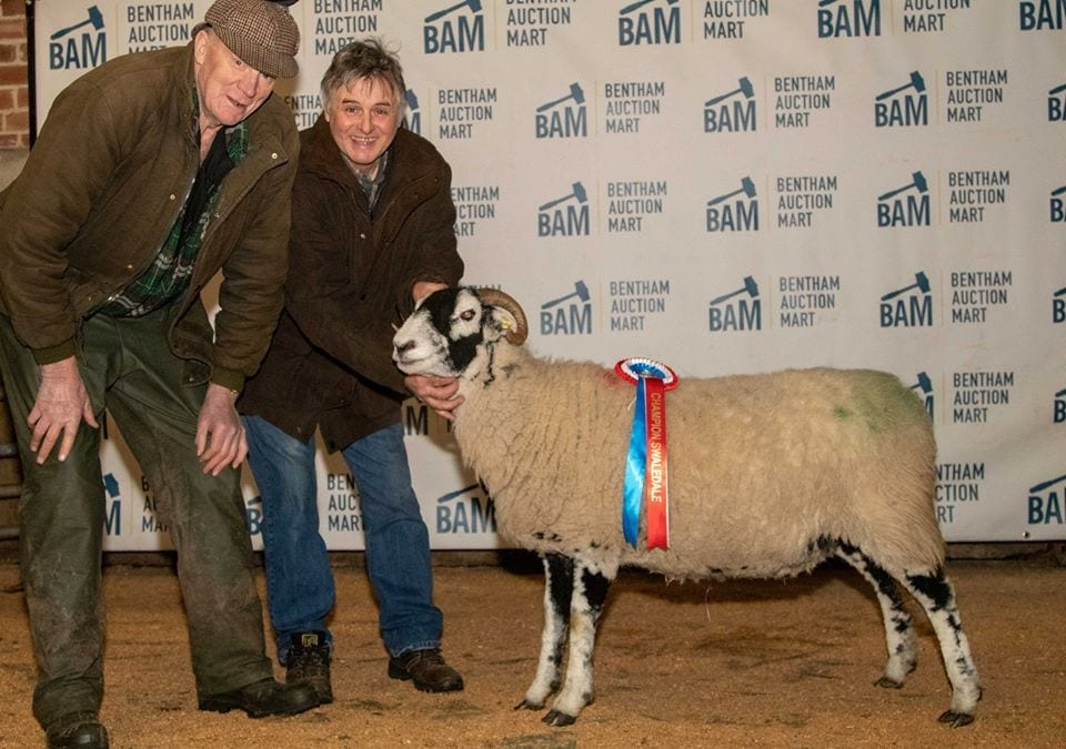 Bentham Inlamb Sale