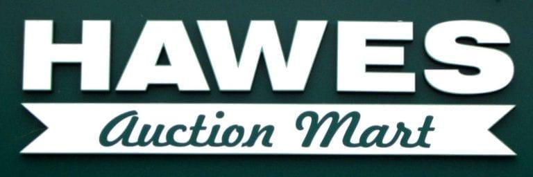 Hawes Inlamb Sale Catalogue 2021