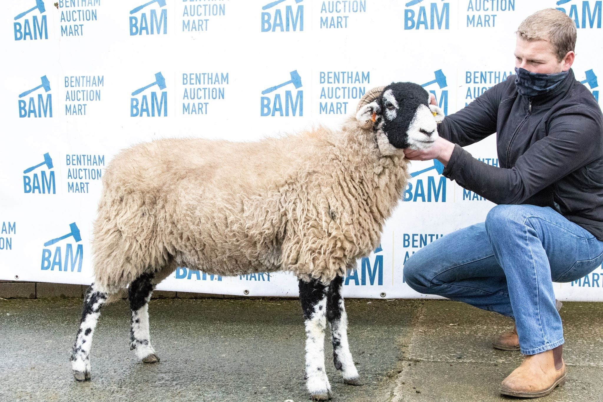 Bentham Inlamb Sale – Saturday 6th February 2021